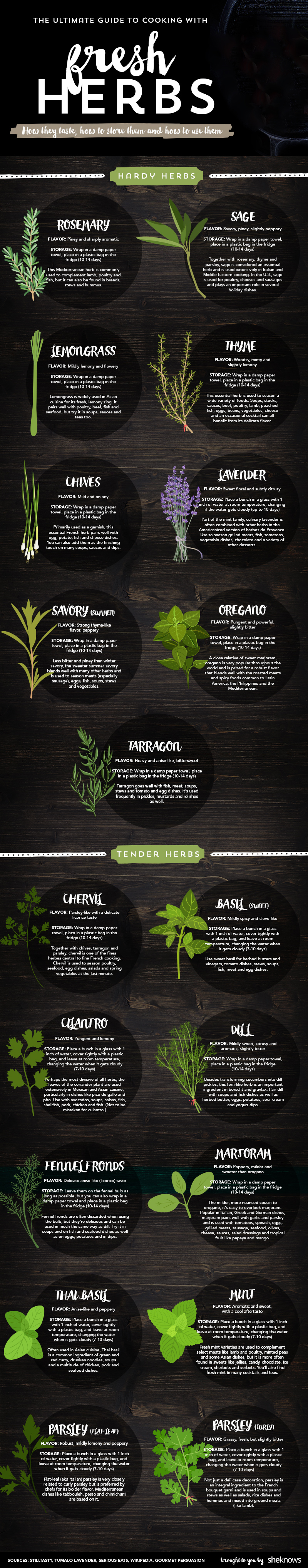Popular Fresh Herbs For Cooking: Their Tastes And Best Uses Infographic