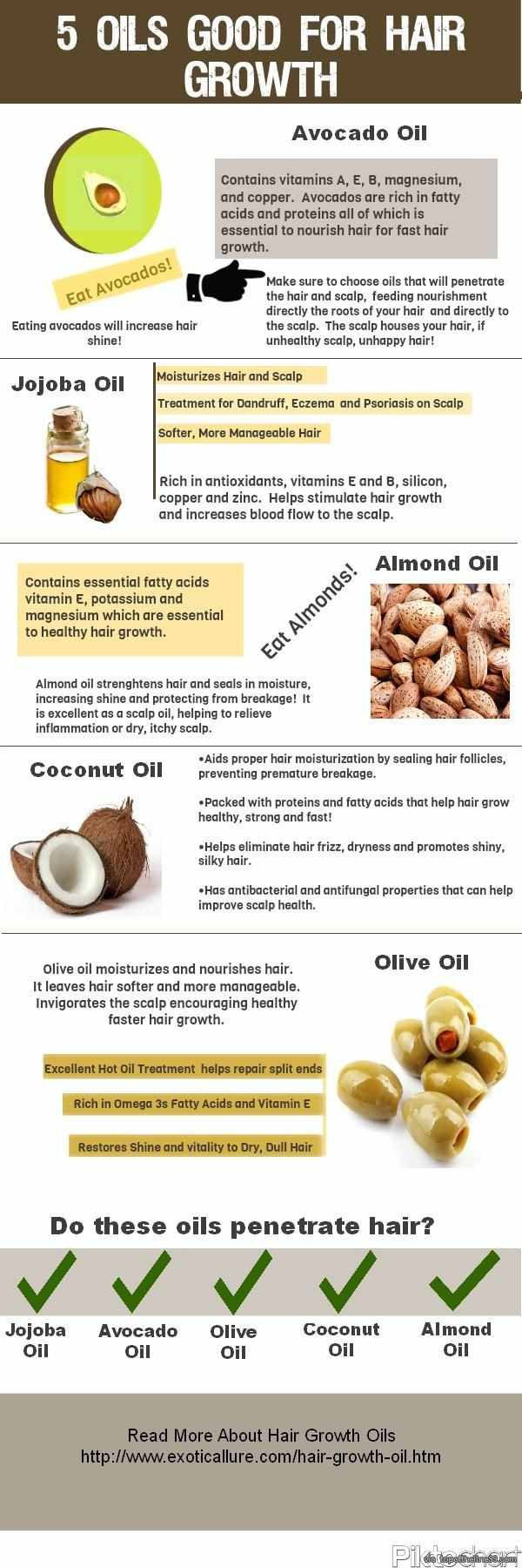 Top 5 Oils To Use For Hair Growth Infographic